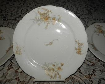 Luncheon Plates from Vienna Austria (set of 6)