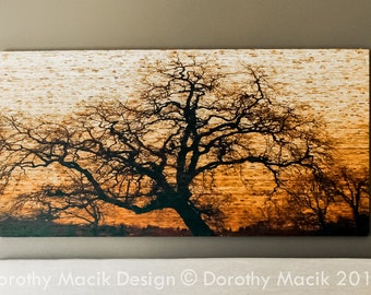 Custom Oak Tree Printed on Kirei Board
