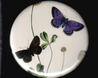 Butterflies on clover