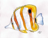 Watercolour painting study of a Beaked Coralfish, original, tropical fish, A4 size, unframed - Jillsgallery