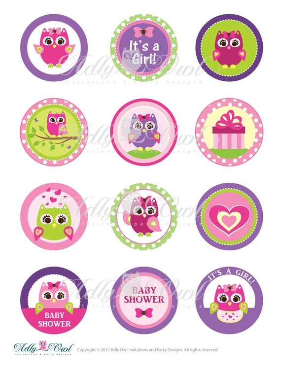 Pink or Purple Girl Owl Baby Shower Cupcake Toppers or Favor Tags