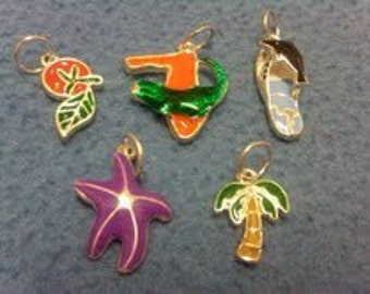 detailed tropical Florida charms