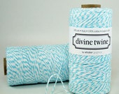 SALE PRICE!  Aqua Bakers Twine- Divine Twine in Aqua and White