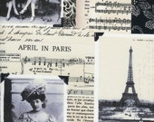 Timeless treasures April in Paris ivory 0,5 m pure Cotton fabric