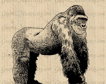 Gorilla Jungle Animal PNG Printable Graphics Digital Collage Sheet Instant Download Fabric Transfer Burlap Pillows Tote Bags An06