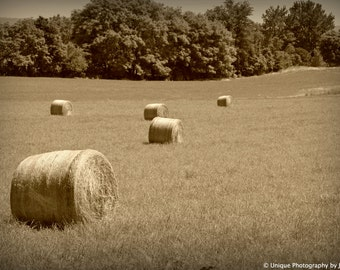 Landscape Photography- Fine Art Photography- Americana Art- Hayfield- 8x12 Print