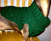 Crochet Dachshund Sweater in Hunter Green