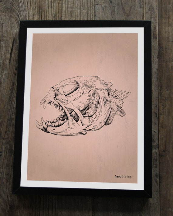 "FISH Skeleton Poster 30 x 40 cm (approx. 12 x 16"")"