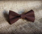 Classic Brown Bow TIe