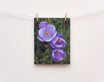 Crocus spring flowers eco-friendly photo postcard