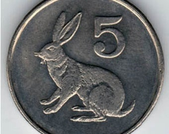 Coin Connoisseur - Rabbit coin from Zimbabwe - KM2 - 5 cents - Hare - uncirculated condition