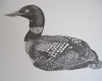 Common Loon Stationary