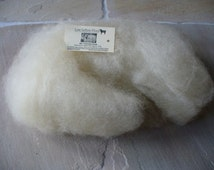 Teeswater Approx 100g Washed and Carded Batt 100% pure British wool
