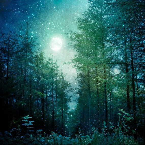 nature photography enchanted forest trees moon and stars firefly clipart firefly clipart cute