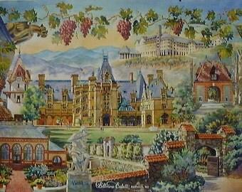 Vanderbilt's Legacy