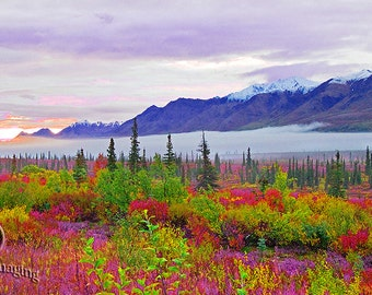 Danali National Park Sunrise, Landscape Photography, Nature Photography, Alaska, Danali National Park, Hiking Alaska, Mountain View