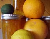 Gourmet Citrus Marmalade, Grapefruit, Navel Oranges, Meyer Lemon, Key Limes 1/2 Pint