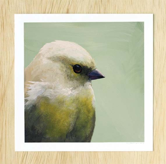 Putting The Whole Hideous Thing Behind Me By Blogging About It 8 x 8 Art Print - Bird - Finch - Giclee - Gift - Nature