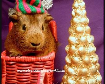 5pc GUINEA PIG CHRISTMAS Magnet Set - Santa Claus, Angel & More