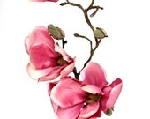 "19"" Magnolia Spray in Pink - Floral Arrangement Supply - ITEM 0913"
