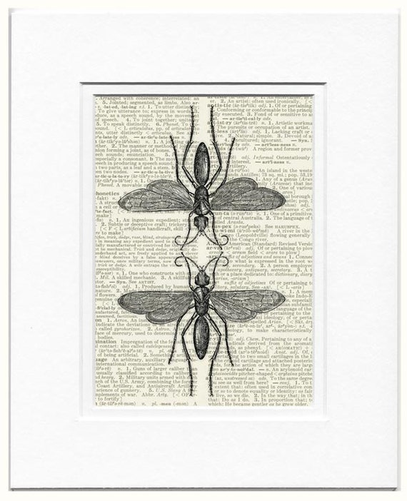 Bees dictionary page print