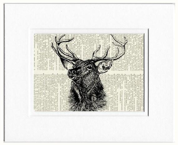 deer portrait print