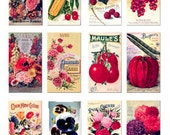 Garden Seed Packet Images digital download collage sheet GreatMusings No.135