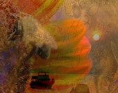 Bee's Eye View, Collage, Photomontage Tag or picture Instant Download- DC019