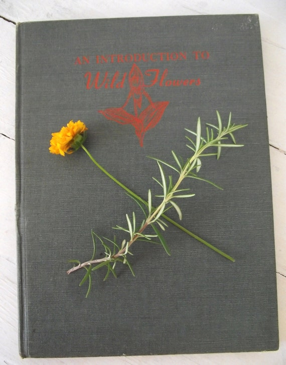 Vintage Flower Book - An Introduction to Wild Flowers -1st Edition by John Kieran