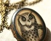 Brass Oval Owl Locket, Brass Owl Pendant, Brass Owl Necklace, Owl Locket, Owl Jewelry, Woodland Locket, Bird Locket, Woodland Animal Locket