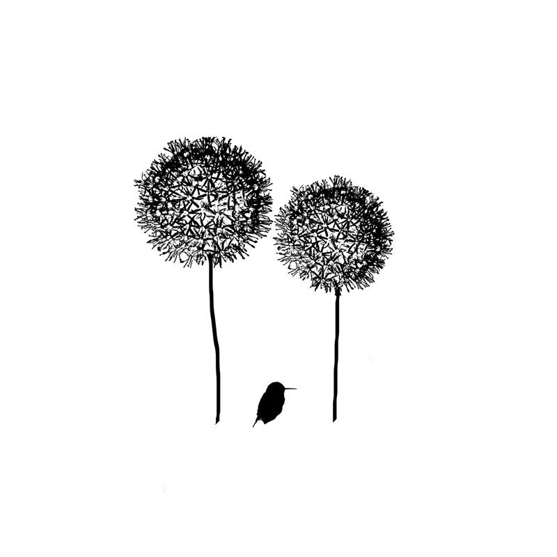 Black and white bird silhouette flower print minimalist nature for Minimal art black and white
