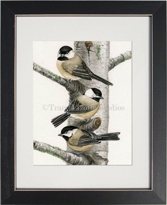 Chickadees in Birch Tree - archival watercolor print by Tracy Lizotte