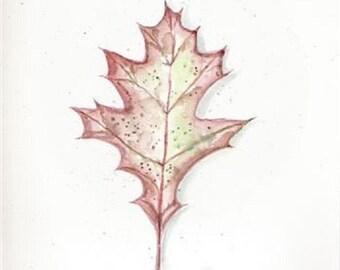 Original watercolor, Oak Leaf painting, Autumn Oak LEAF, Watercolor Painting, painted leaf