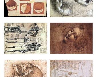 Digital Download Six ATC Vintage Human Anatomy Da Vinci Madonna Collage Sheet Downloads, DigitalCollageSheets