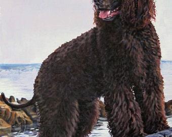 Irish Water Spaniel art CANVAS print of LA Shepard painting 8x10 dog art