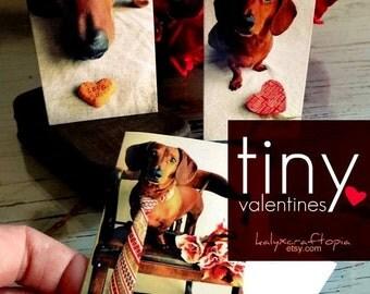 SET of 9 Tiny Dachshund Valentines - Blank Inside