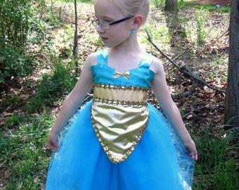 Jasmine Tutu Dress: lined blue and gold, Aladdin, Princes Birthday Party, princess dinner, meet and greet, adjustable, Halloween Costume