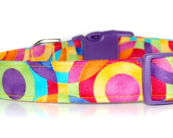 Picasso,,,,,Bright, bold and colorful custom Dog Collar