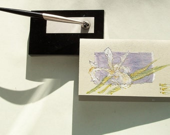 Milky white iris - blank greeting card