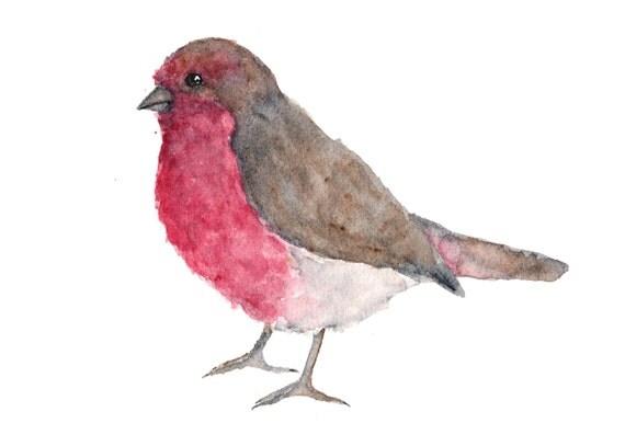 Watercolor painting, bird painting, animal painting, bird print, finch painting, bird art, house finch, bird illustration, 7X5 print