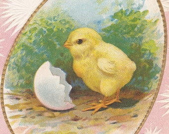 Ca. 1910 Easter Greetings Postcard w/ Bird & Violets - 72