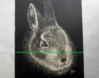 Vintage Jack Kline Black and White Jack Rabbit Print 11x14 Wildlife