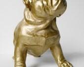 Bulldog, British Bulldog, Canine, Bulldog Ornament, English Bulldog, Gold Dog, Gold Bulldog, Hodi Home Decor, Bulldog Figurine,Dog Figurine