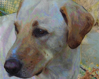 Custom Pet Portrait, 6 x 6 Dog, Head and Shoulders Only,  Yellow Lab