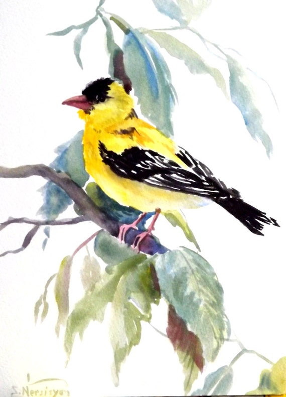 American Goldfinch Painting American Goldfinch Original