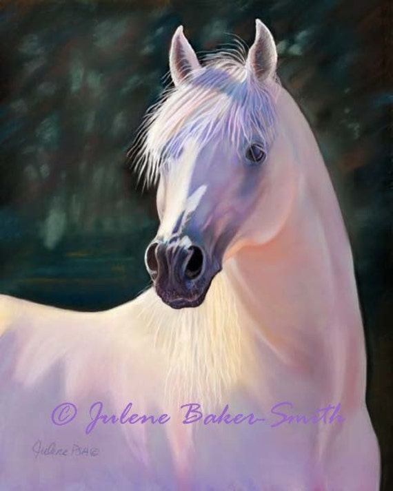 The Boss: Proud Stallion horse art print