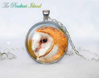 OWL PENDANT   owl necklace White owl Jewelry Necklace for him  Art Gifts for Her Art Gifts (P10013)