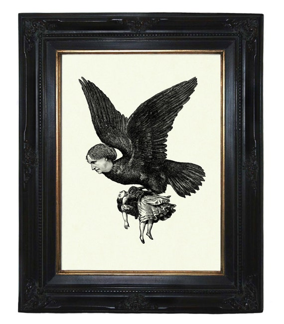Harpy Ladybird carries off Girl Steampunk Victorian Gothic engraving art print