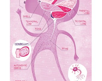 The Nervous System Poster