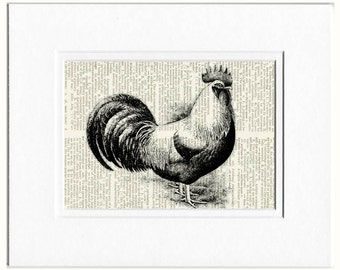 rooster dictionary page print
